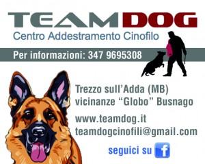 TeamDog_50x40